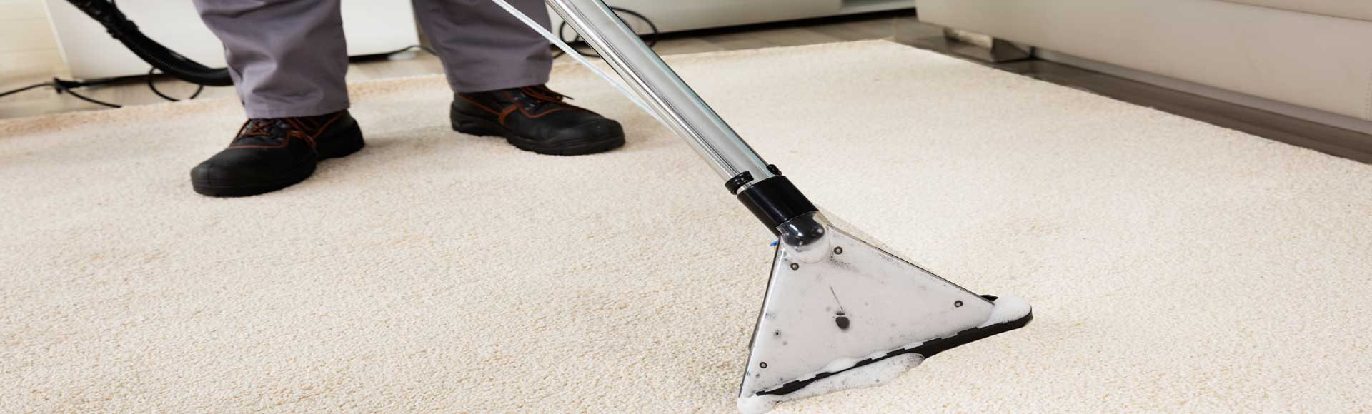 Carpet Cleaning Homes 2 Services